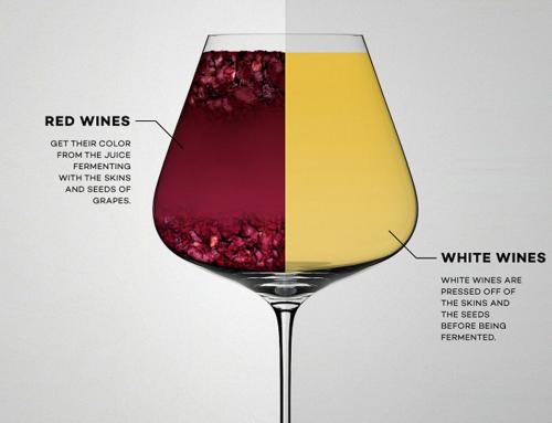Khác nhau giữa Rượu vang đỏ và rượu vang trắng